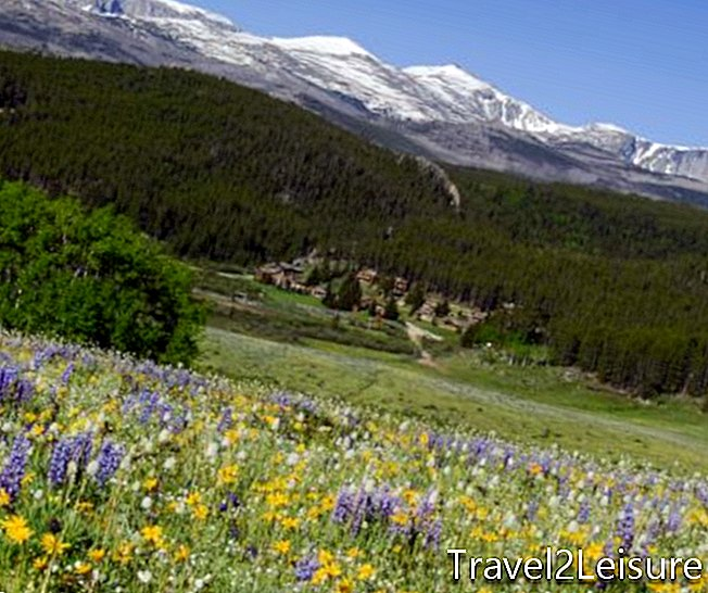 Παράδεισος Ranch View Wildflowers